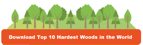 Hardest-Woods-In-The-World