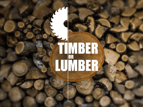 what s the difference between timber and lumber. Black Bedroom Furniture Sets. Home Design Ideas